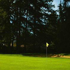 We can't wait for summer in the Northwest. Oakbrook Golf Club, Lakewood, WA.