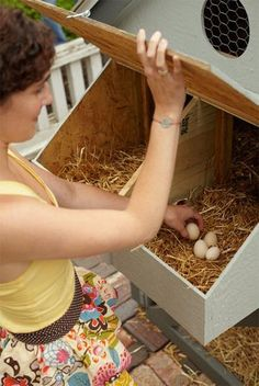 10 tips for egg safety   Living the Country Life