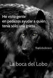 Imagen relacionada Wolf Quotes, Men Quotes, Frases Bts, Wolf Life, Warrior Spirit, Millionaire Quotes, Magic Words, Typography Quotes, Spanish Quotes