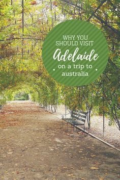 Why you should visit Adelaide on your trip to Australia