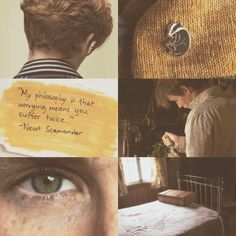"""Newt Scamander Aesthetic"