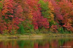 Michigan in the fall