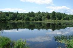Arcadia Management Area | Southern RI | Miles of hiking, biking, horseback riding trails. Fishing, kayaking, canoeing also allowed.