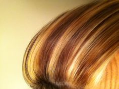 Fall color highlight and lowlights I want this.. with some color too..