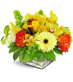 What a sunshiney surprise! Bright lemon cymbidium orchids are a cheerful  and luxurious gift for your special occasion - birthdays, get well, and  more!Elegant cymbidium orchids, roses, Gerbera daisies, and so much more are arranged in a bright, modern display.