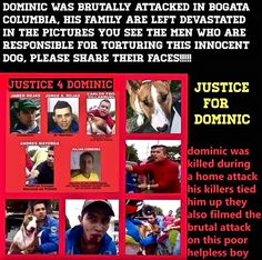 These Are The POS's That Killed Dominic!!