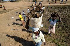 Embora o ciclo de um dos El Niños mais intensos já registrados tenha chegado ao fim, mais de 26,5 milhões de crianças vão continuar sofrendo as consequências do fenômeno climático pelos próximos meses em comunidades vulneráveis de países como Angola, Lesoto, Moçambique, Zimbábue, Etiópia e Suazilândia.  Fotografia: Sebastian Rich.