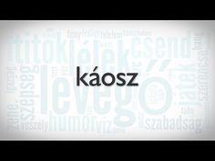 A Z generáció hívószavai: KÁOSZ - http://www.justsong.eu/a-z-generacio-hivoszavai-kaosz/