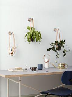 Holmegaard hyllar hängväxter ‹ Dansk inredning och design
