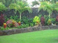52 new Ideas tropical landscape front yard ideas Plants, Tropical Backyard, Tropical Garden, Large Backyard Landscaping, Garden Landscape Design, Outdoor Gardens, Urban Garden, Tropical Landscaping, Tropical Landscape Front Yard