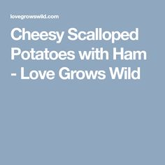Cheesy Scalloped Potatoes with Ham - Love Grows Wild