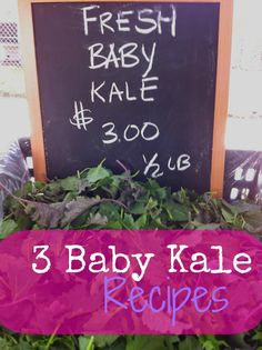 These three baby kale recipes will have your taste buds doing a happy dance! | via @Fit Bottomed Girls
