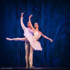 Liudmila Konovalova and Matthew Golding, The Royal Ballet/The Sleeping Beauty    Photographer: Alex Pankov
