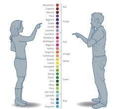 Estudo comprova diferença de cores para homens e mulheres | Você realmente sabia?