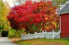 Durham,New Hampshire