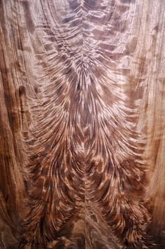 Discover thousands of images about Stabalized black ash burl Wood Slab, Wood Veneer, Got Wood, Wood Tools, Wood Patterns, Woodworking Wood, Wood Texture, Wood Design, Wood Species