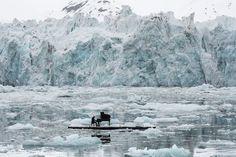 Svalbard, Norway: Pianist Ludovico Einaudi