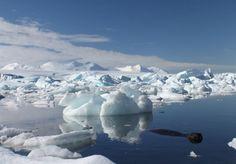 Antárctida e Gronelândia estão a derreter mais rapidamente - PÚBLICO
