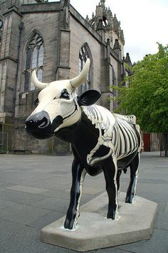"""Skeletal Cow [outside] St. Giles Cathedral"" in the Cow Parade in Edinburgh, Scotland - photo by Niall Corbet, via Flickr"