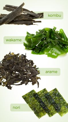 All About Sea Vegetables (And why you should be eating them!)