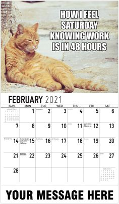 2021 Meme Humor Wall Calendars low as Advertise your Business, Organization or Event all year. Calendar App, Us Holidays, Post Ad, Advertise Your Business, Free Advertising, Daily Activities, Digital Marketing, Funny Memes, Feelings