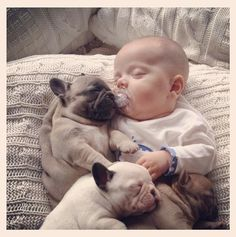 Baby sleeping with French bulldog puppies