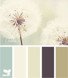 wish tones design seeds color palette, for living area Design Seeds, Wall Colors, House Colors, Paint Colors, Colours, Paint Themes, Soft Colors, Paint Ideas, Light Colors
