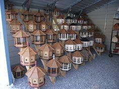 wren bird houses placement