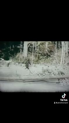 Unexplained Pictures, Bigfoot Video, Short Creepy Stories, Paranormal Pictures, Strange History, Coincidences, Scary Things, Funny Things, Ghost Towns