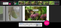 Bubblr -- students can create free comic strips using flickr creative commons images. They simply search under tag and they're offered a wide array of photos to choose from that all meet fair use standards! This web 2.0 tool is great for the classroom because it's simple to navigate and easy for young children to publish their own unique story.