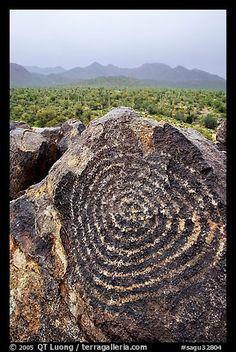 Circular Hohokam petroglyphs in Saguaro NP, Arizona