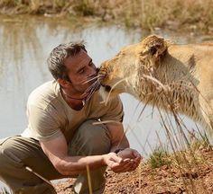 Podrá andar en dos patas, pero para los leones, él es uno de ellos. Se trata de Kevin Richardson, un hombre que ha logrado comunicarse con los reyes de la selva, a un nivel tan íntimo que quizá nadie lo hubiera imaginado. Y con estas fotos, busca dar no solo un mensaje de paz, sino también de conservación. Por Abraham Monterrosas Vigueras.