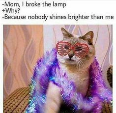 Broke The Lamp