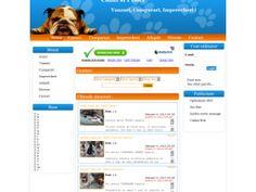 Portal pentru anunturi de vanzare, cumparare si imperechere pentru caini si pisici. cainisipisici.com