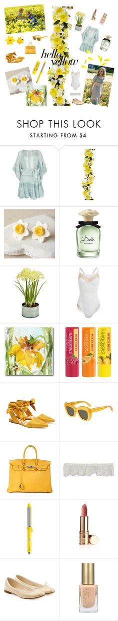 """""""Daffodils! How did you get so many?"""" by lilian-rebelle ❤ liked on Polyvore featuring Zimmermann, Burton, Dolce&Gabbana, Picnic at Ascot, Courtside Market, Burt's Bees, Sam Edelman, CÉLINE, Hermès and STELLA McCARTNEY"""