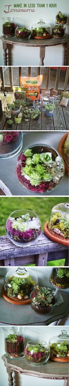 How to make a terrarium.  Great centerpiece for the patio table.
