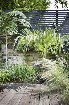 Trend Alert: Black Fences - Gardenista