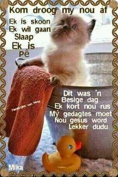 Afrikaanse Quotes, Goeie Nag, Nighty Night, Good Night Quotes, Sleep Tight, Morning Greeting, Emoticon, Good Morning, Words