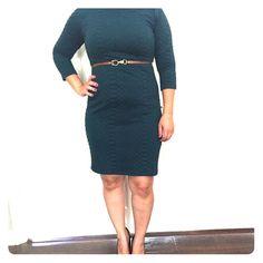 Sweater dress Sharagano Women's Python Embossed Three-Quarter Sleeve Belted Pencil Dress Sharagano Dresses