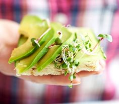 Zielona kanapka z awokado