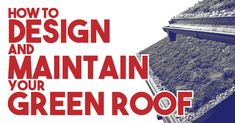 Green roof technology has been long been popular throughout Europe, but it is now growing in popularity throughout North America. Roof Plants, Green Roof System, Living Roofs, Roof Installation, Thing 1, Water Retention, Roofing Systems, Roofing Contractors, Water Quality