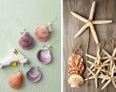 decorazione con le conchiglie: vasetti per piante aeree ... - Conchiglie Per Decorazioni