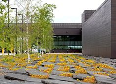 Warroad-Coen_partners-12 « Landscape Architecture Works | Landezine