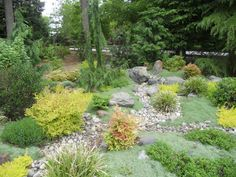 dry stream bed landscape design | Renovation – Sunset Landscape and Design, Inc.