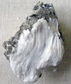 Asbestos fibers (termolite) with muscovite, from Bernera, Inverness-shire, England. Specimen photographed at the Natural History Museum, London.