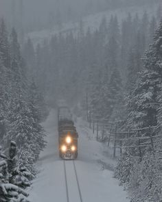 Winter At Motanic, Train in the Blue Mountains, Eastern Oregon Beautiful World, Beautiful Places, Old Trains, Winter Scenery, Snow Scenes, By Train, Winter Beauty, Train Travel, Train Trip