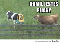 Idź spać kamil