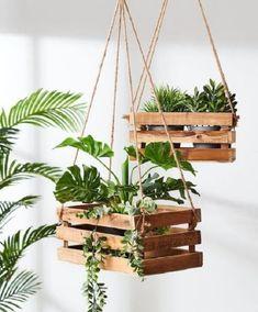 Best Indoor Plants, Outdoor Plants, Outdoor Gardens, Indoor Outdoor, Diy Garden, Indoor Garden, Indoor Wall Planters, Indoor Plant Decor, Garden Ideas