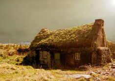 An abandoned cottage with a roof nearly taken over by vegetation is bathed in eerie light in County Kerry, Ireland.