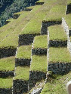 Stone Terracing Machu Pichu, Peru